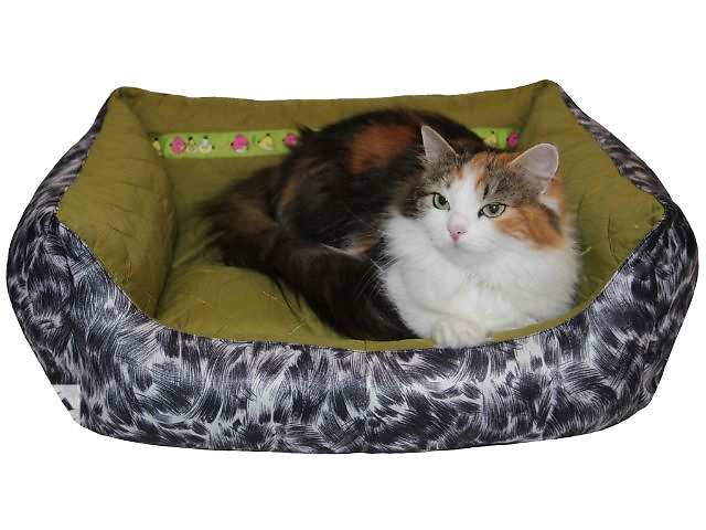 бу диванчики для животных в Николаеве