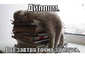 Рефераты курсовые дипломные работы в Днепре Днепропетровск  Рефераты курсовые дипломные работы