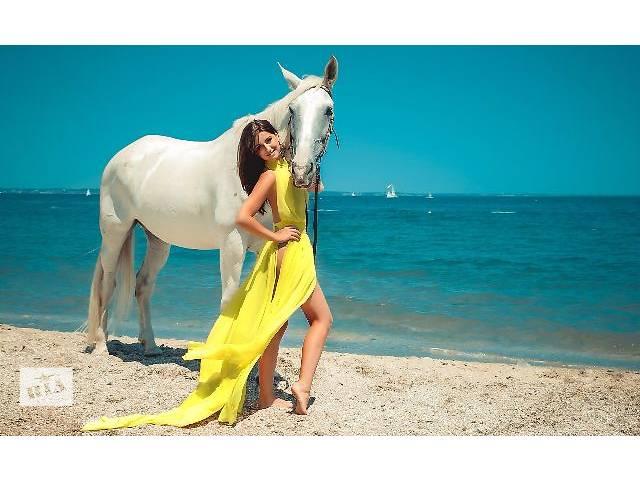 продам Фотосесии с лошадью бу в Одесской области