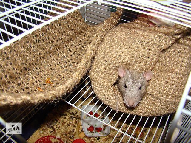 Вязаный гамак для крысы своими руками 99