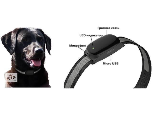 продам GPS ошейник для собак и кошек бу в Киеве