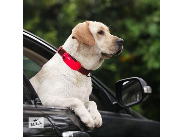 продам GPS ошейник для собак бу в Киеве