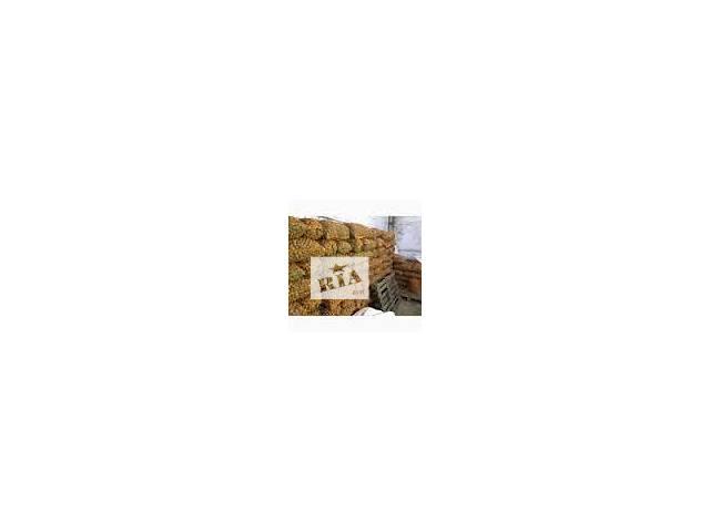 купить бу Грецкий орех круглый калиброванный на экспорт в Харькове
