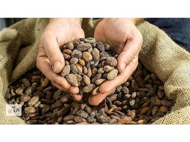 продам Какао-бобы. 1 сорт из Ганы, топ-1 город по выращиванию какао зёрен. бу  в Украине