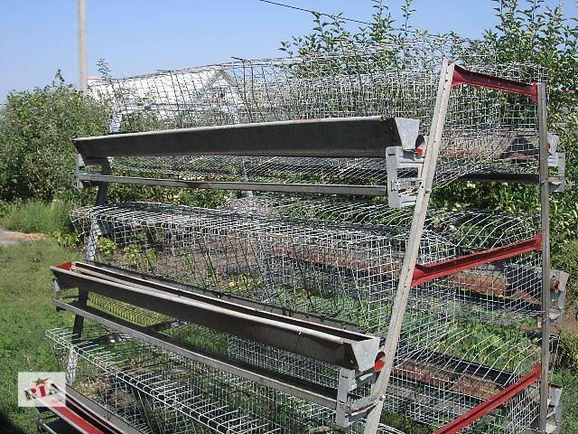 купить бу Клетка для кур-несушек БКН-120 с поением ниппельным на 120 кур, куры несушки, клетки  для кур, клетки в Бахмуте (Артемовск)