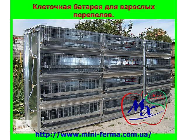 бу Клетки для содержания перепелов в Одессе