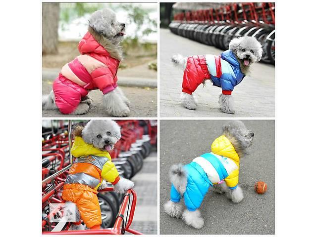 продам Комбинезон для собак бу в Днепре (Днепропетровске)