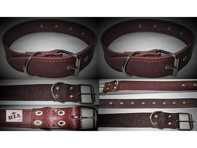 Кожаный ошейник для собак- объявление о продаже  в Тернополе