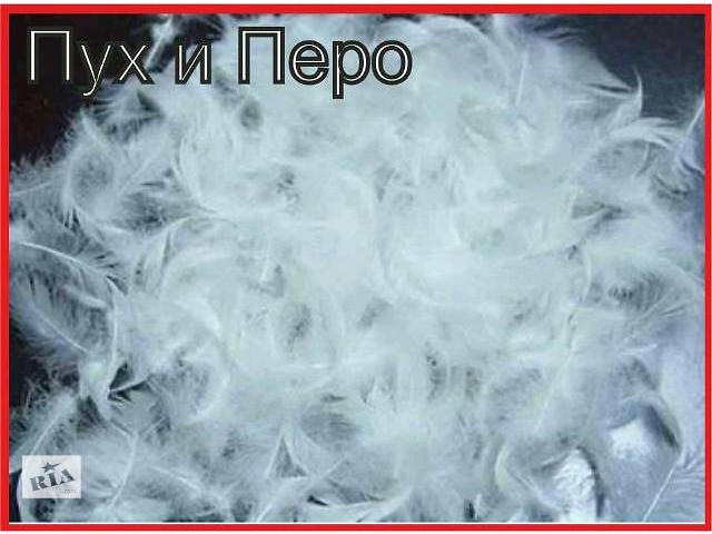 Куплю оптом гусиний утиний пух перо: Птицы в Белой Церкви на RIA.com