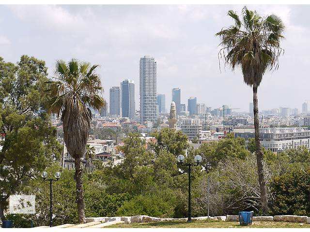 продам Легальное трудоустройство в Израиле бу в Одессе