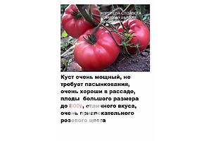 бу Комнатные растения, рассада и цветы в Кривом Роге Вся Украина