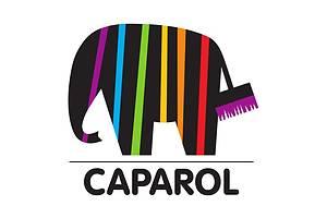 Новые Фасадные материалы Caparol