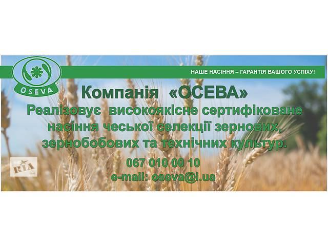 бу Семена зерновых, бобовых и технических культур в Тернополе