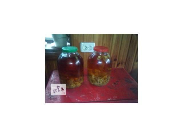 купить бу Настойка гриба Барышни или Радуги в Житомире