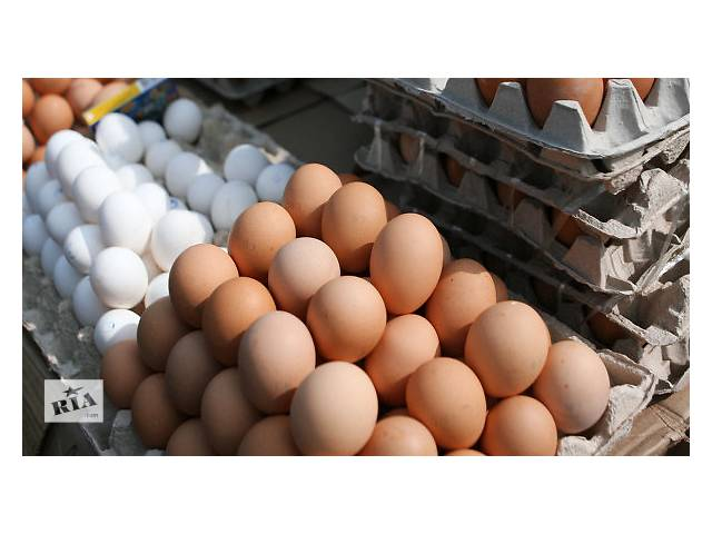 купить бу Недорого куриные яйца категории c-0 и с-1 в Киеве