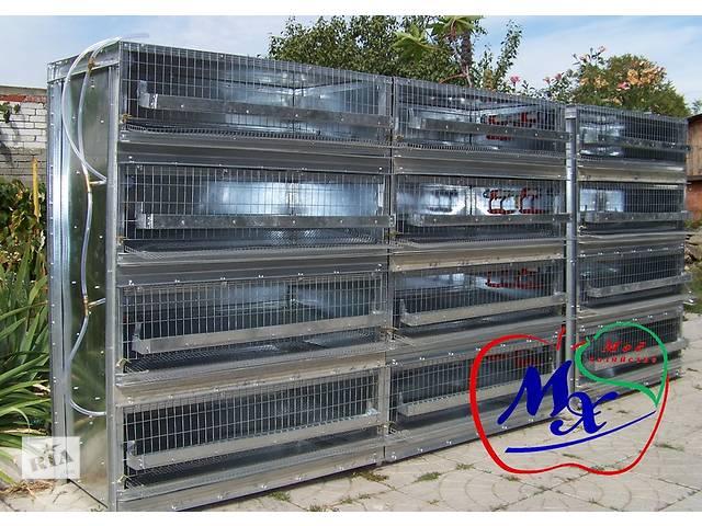 бу Оборудование для содержания перепелов  (клетки). в Одессе