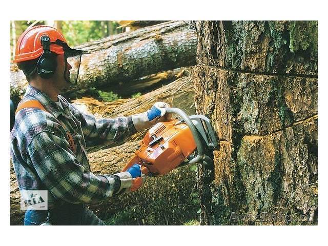 купить бу Обрезка деревьев в саду, Спилим деревья, Кронируем деревья в Черниговской области