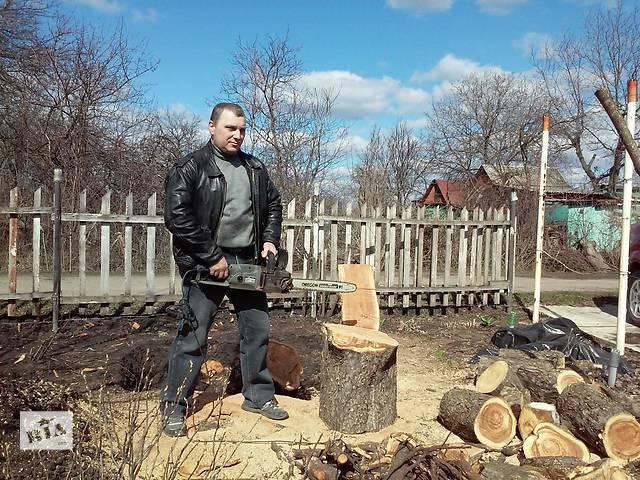 Обрезка сада,спил деревьев- объявление о продаже  в Харькове
