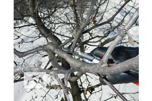 Обрізка дерев, усунення аварійних дерев, садові роботи.