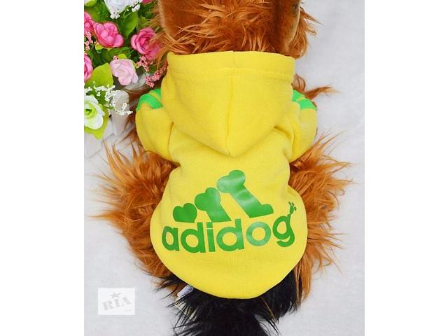 купить бу Одежда для собак модная толстовка Addidog в Днепре (Днепропетровск)
