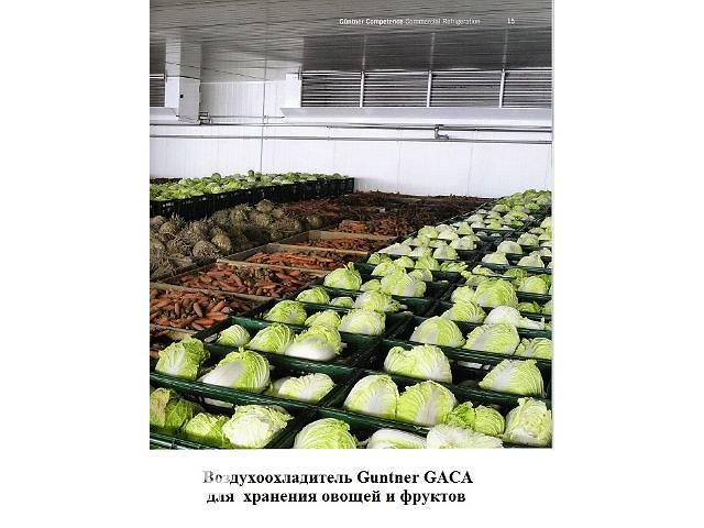 продам Овощехранилища. Холодильные и морозильные камеры. бу в Киеве