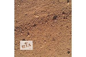 Нові Піски