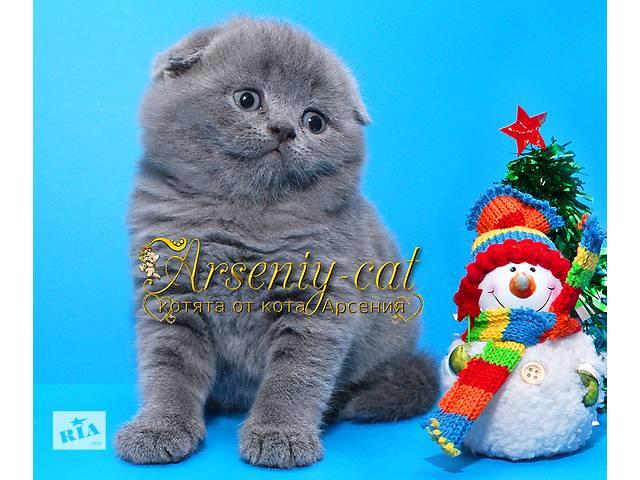 купить бу Плюшевый мишутка -  чудесный новогодний подарок! в Киеве