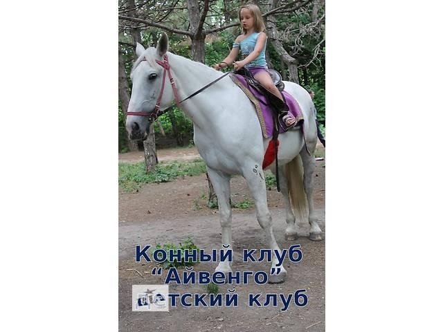 купить бу Пони и ослики для детских праздников  в Украине