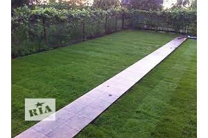Новые Газонная трава