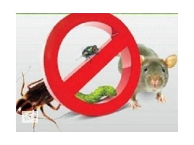 купить бу услуги уничтожения грызунов, тараканов. в Виннице