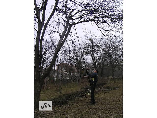 купить бу Предлагаем профессиональную обрезку деревьев в Харькове