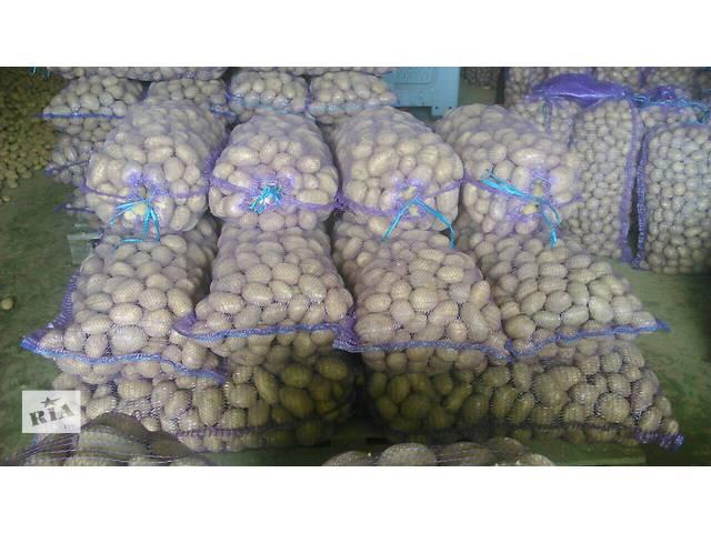 продам Продаем картофель оптом из Беларуси бу в Донецке