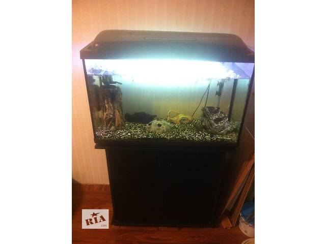продам Продам аквариум срочно бу в Киеве