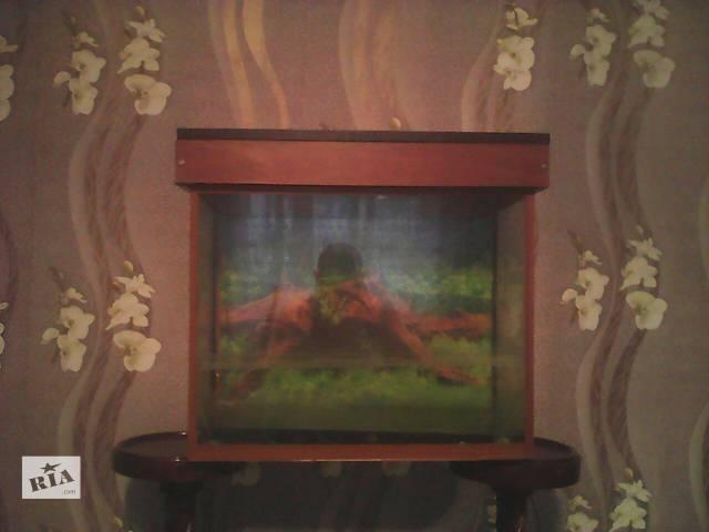 Продам аквариум- объявление о продаже  в Сумах