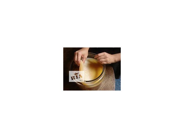 Продам чайный гриб, он же японский гриб, морской квас, чайная медуза, медузомицет,чайный квас, комбу- объявление о продаже  в Херсоне