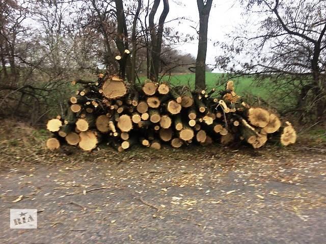 продам Продам дрова и щепу отопительную бу в Днепре (Днепропетровске)