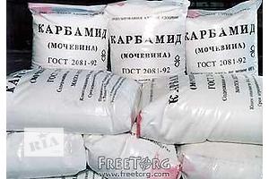 новый Комнатные растения, рассада и цветы в Днепропетровске Днепропетровск