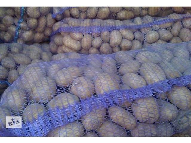 купить бу продам картоплю в Бучаче