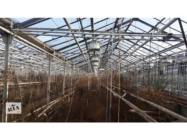 Продам крупный тепличный комплекс в Черкасской области- объявление о продаже   в Украине