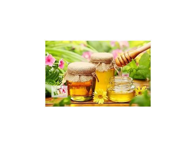 Продам мед с домашней пасеки- объявление о продаже  в Сумах
