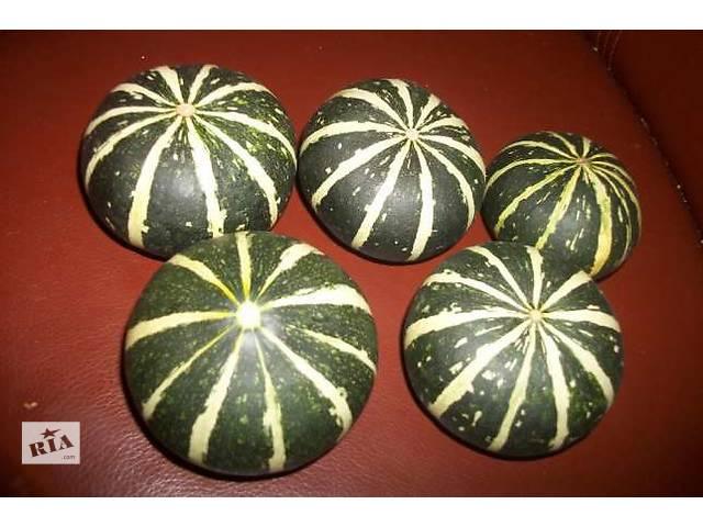 продам Продам семена декоративной тыквы-мини, свои урожая 2016 г. бу в Харькове