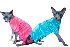 Объявления Одежда для животных