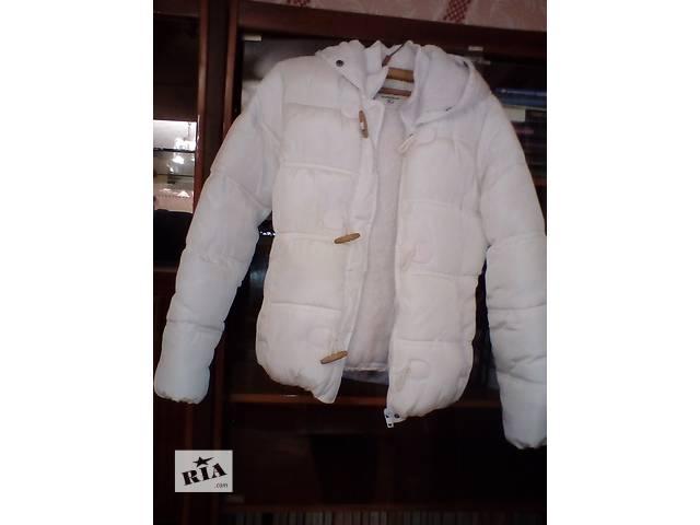Продаю зимню куртку- объявление о продаже  в Ужгороде