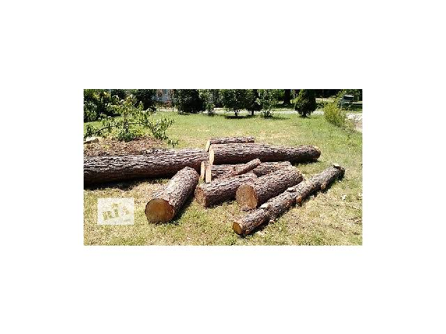 купить бу Продаються дрова - дуб, граб, сосна в Житомире