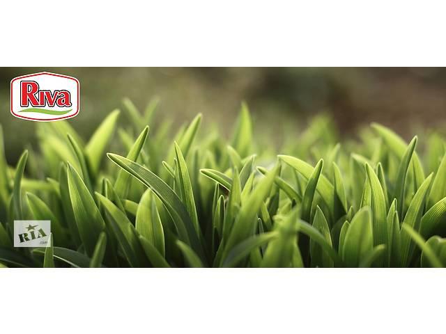 продам Продажа семян овощей, цветов и газонных трав бу в Ровно