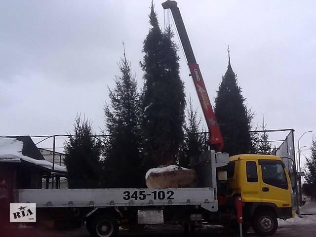 продам Продажа и посадка крупномеров, различных видов деревьев. бу в Харькове
