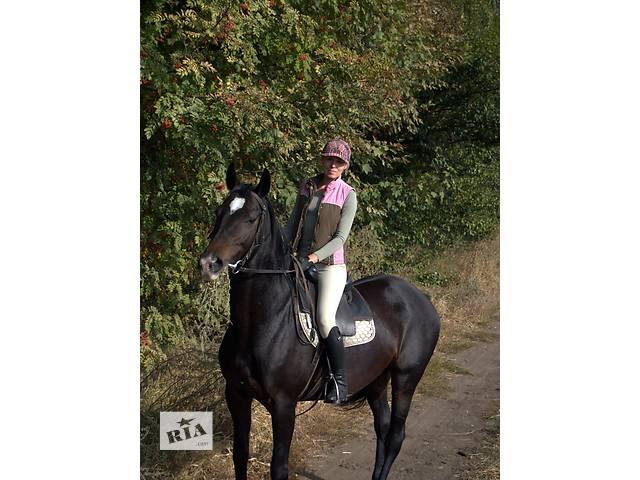 бу Работа с лошадьми (конюх-коновод)  в Украине