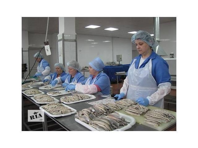 купить бу Работа в Норвегии на рыбзаводе без о\р и знания языка  в Украине