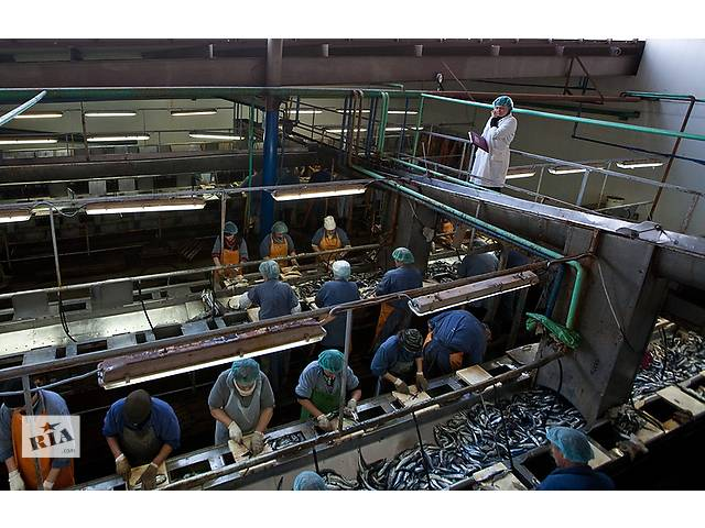 купить бу Работа в Польше для мужчин и женщин на рыб. заводе  в Украине