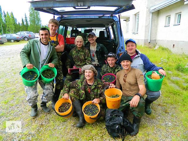продам Работа за границей. Сбор урожая в Финляндии бу  в Украине